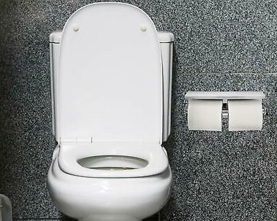 Alpine Double Roll Toilet with